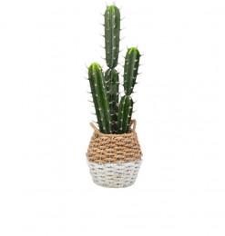 Cactus artificiel H69.85cm...