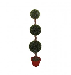 Arbre boxwood topiary