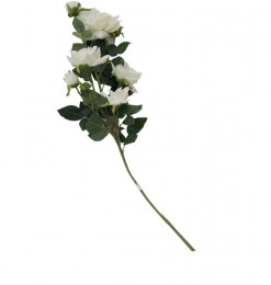 Tige de roses blanches