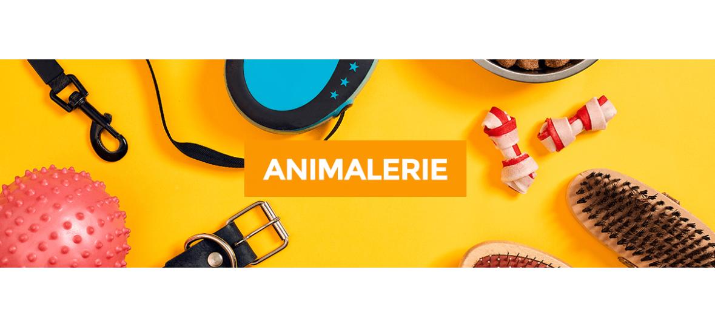 Animalerie - ORCA